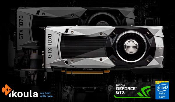Intel® Xeon® GPU